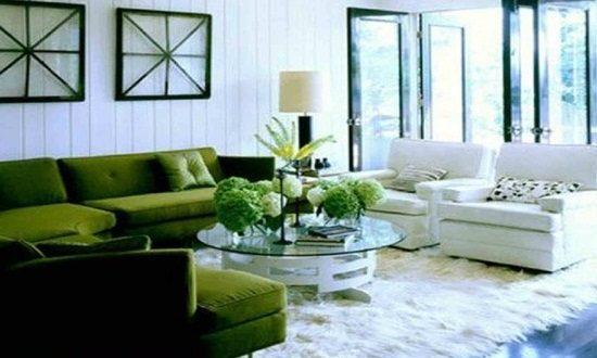Green living room interior design