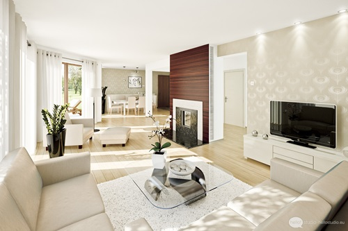 French Living Room and a minimalist