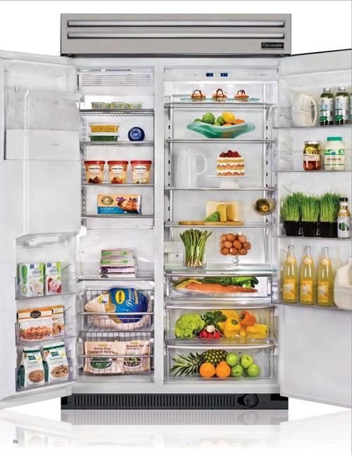 Unique types of refrigerators