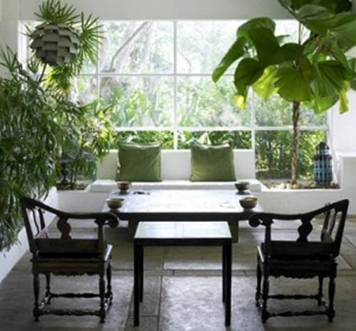 Fresh Indoor Plants Decoration Ideas For Interior Home: The Right Plants To Decorate Your Home