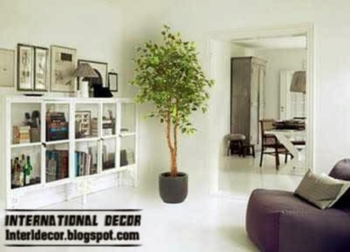 The right plants to decorate your home interior design for Decorate your home