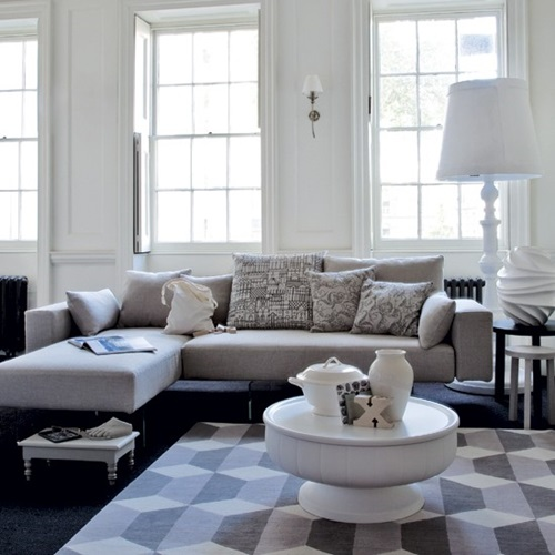 Living rooms accessories and focal points