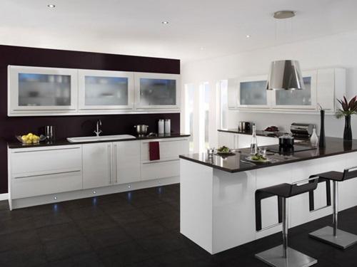 Black and White Minimalist Kitchens