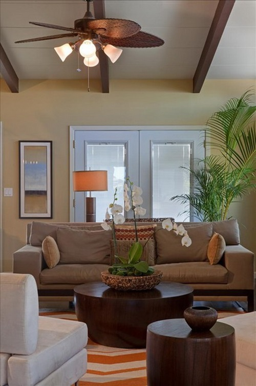 Designing a Palm Tree Themed Living Room