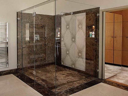Elegant Glass Bathroom Door Designs - Interior design