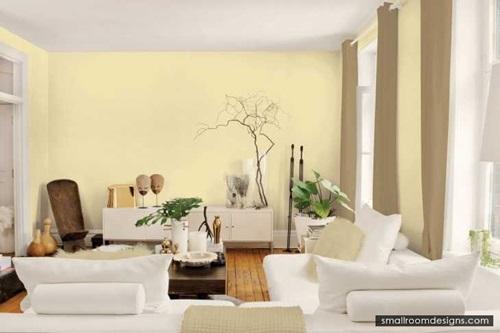 Most Popular Decorative Paint Techniques