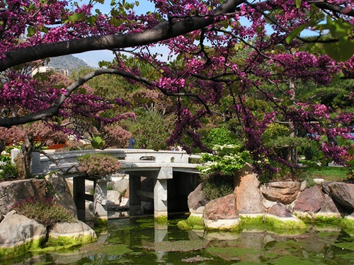 How to Create a Gorgeous Japanese Garden