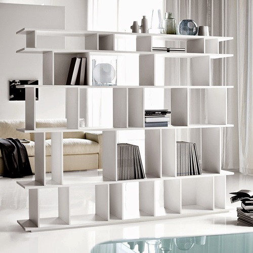 Modular bookshelves and room divider