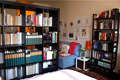 Modular bookshelves and room divider