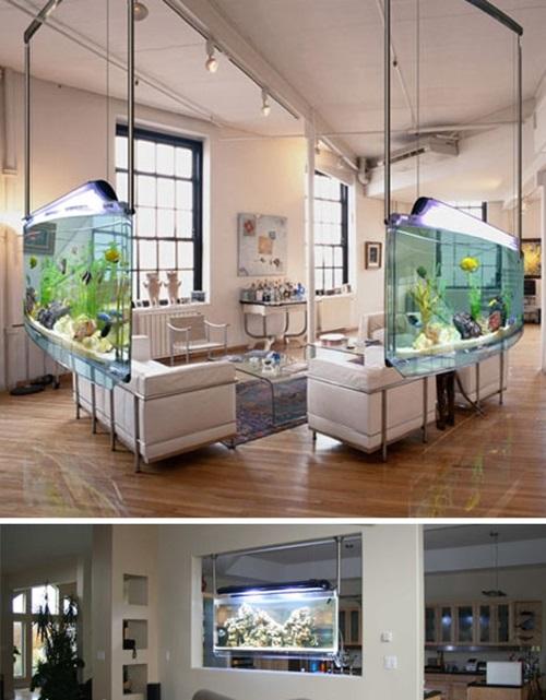 Designing a Fish Aquarium by yourself
