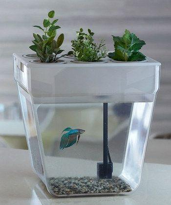 8 Dual-Purpose Fish Tank Design Ideas