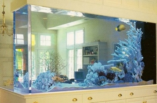 8 Dual-Purpose Fish Tank Design Ideas