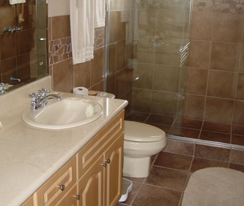 5 smart tips for choosing bathroom countertops interior for Smart bathroom designs