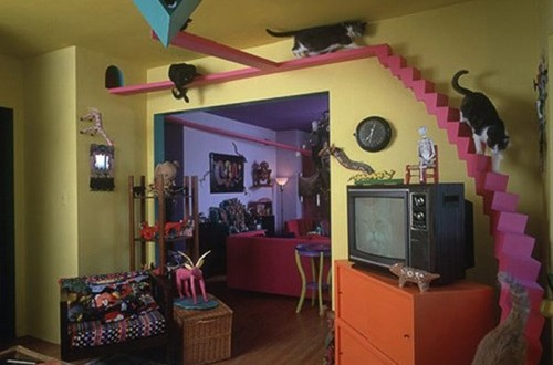 Cat inspired home decorating ideas interior design for Cat decorations home