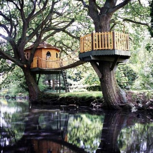 How to Design a Unique and Special Tree House