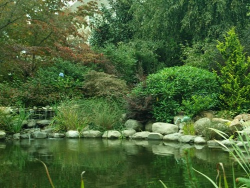 How to clean your outdoor pond efficiently interior design for How to clean a fish pond