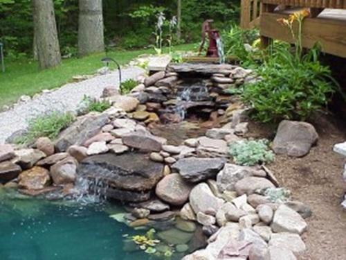 How to Clean Your Outdoor PondEfficiently