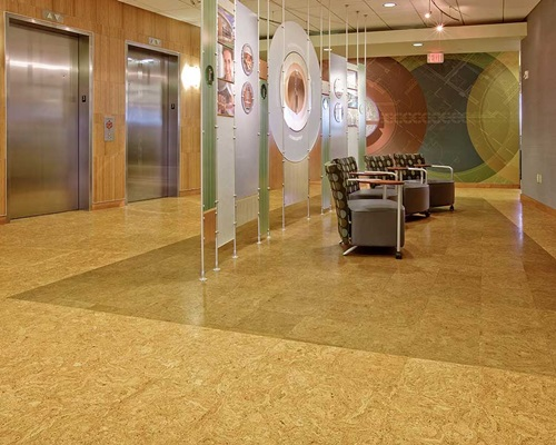 is cork floor a right option for your home interior design