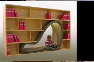 Interesting Ways to Provide Your Bookshelf a Stylish Look