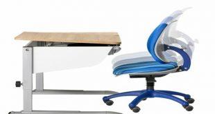 Ergonomic stylish healthy furniture