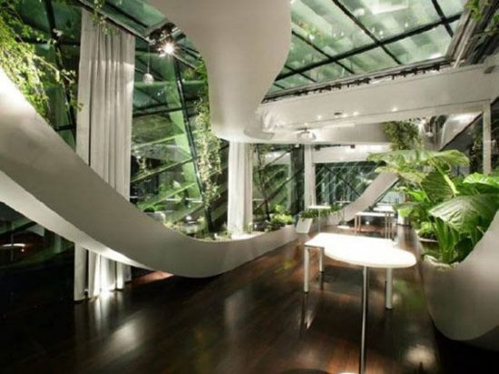 Indoor garden to enhance the home beauty and freshness