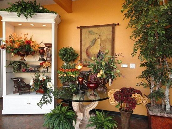 Beautify Each Room In Your House By Pretty Plants As