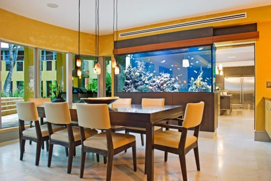 How to design your homely fish aquarium by yourself and enhance your home tranquility