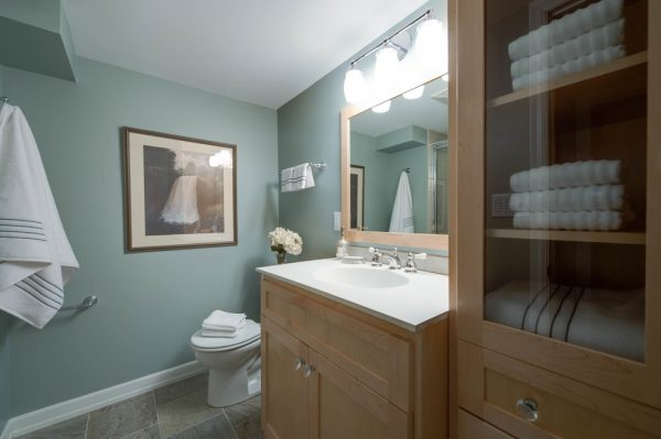 bathroom decorating ideas and designs Remodels Photos Anna Berglin Design Saint Louis Park Minnesota United States traditional-bathroom-001