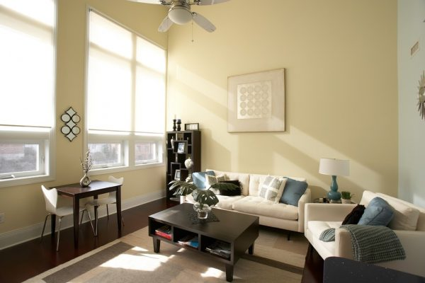 living room decorating ideas and designs Remodels Photos Amy Tyndall Design Wilmington, NCCarolina United States contemporary-living-room-003