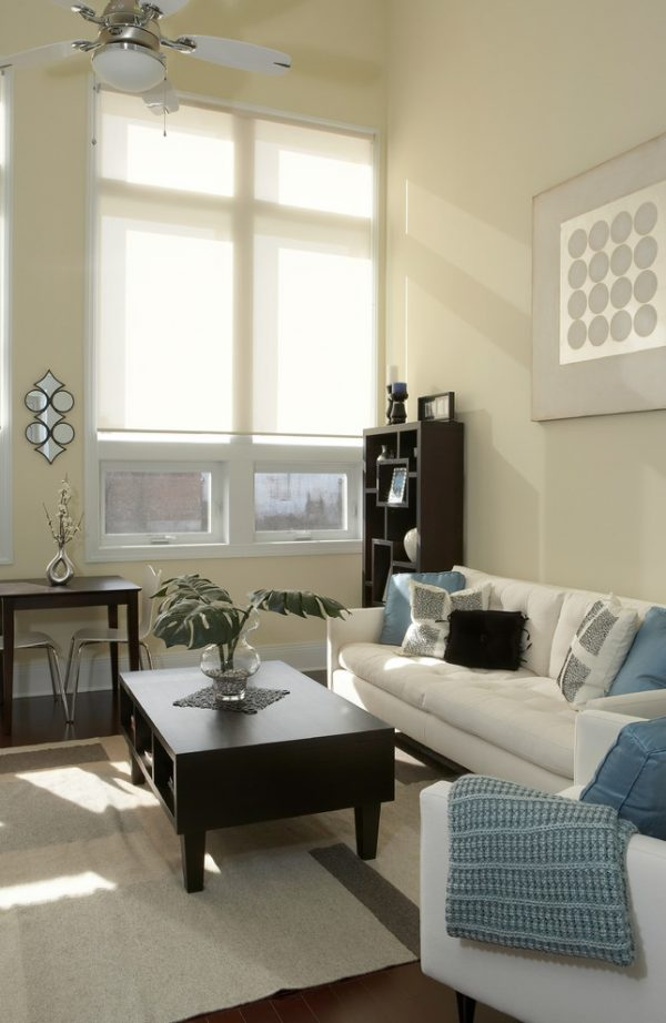 living room decorating ideas and designs Remodels Photos Amy Tyndall Design Wilmington, NCCarolina United States contemporary-living-room