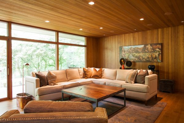 living room decorating ideas and designs Remodels Photos Tina Barclay Lake Oswego Oregon United States contemporary-living-room