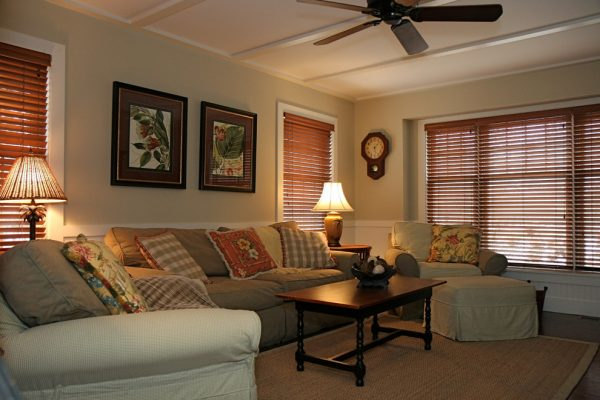 living room decorating ideas and designs Remodels Photos Diana Bier Interiors, LLCRockville Centre New York tropical-family-room