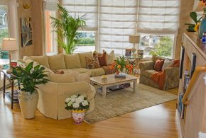 Living Room Decorating and Designs by Linda Banks Interiors - Sausalito, California, United States