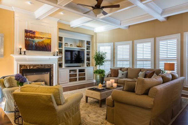 living room decorating ideas and designs Remodels Photos Paige Designs LLC Cary North Carolina United States transitional-family-room
