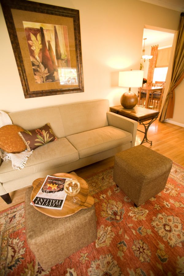 living room decorating ideas and designs Remodels Photos Sue Rosenbaum Woodbridge Virginia United States traditional-living-room-001