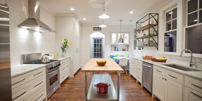 kitchen decorating ideas and designs Remodels Photos Nathan Cuttle DesignBrooklynNew York United States contemporary-kitchen-001
