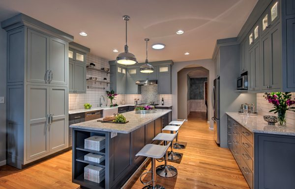 kitchen decorating ideas and designs Remodels Photos yaminidesigns, llc Evanston Illinois United States contemporary-kitchen-003