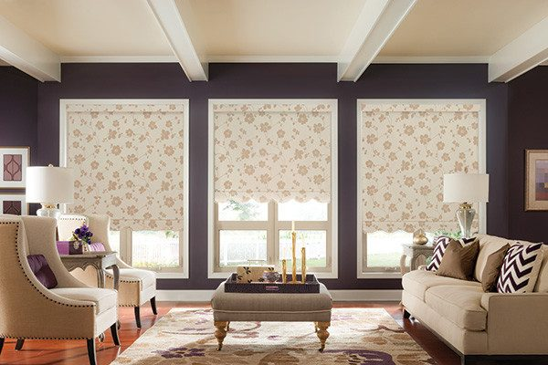 living room decorating ideas and designs Remodels Photos 7 Sisters InteriorsSolana BeachCalifornia United States transitional-living-room