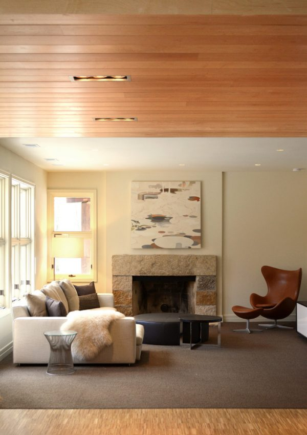 living room decorating ideas and designs Remodels Photos Amy Carman Design Elm Grove Wisconsin United States contemporary-basement