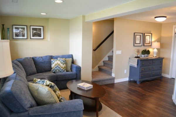 living room decorating ideas and designs Remodels Photos Kelly Brasch Interiors Cary Illinois United States contemporary-basement