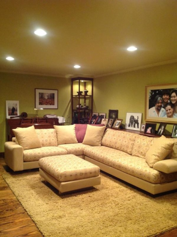 living room decorating ideas and designs Remodels Photos Lee Design and Interiors Alexandria Virginia United States traditional-family-room