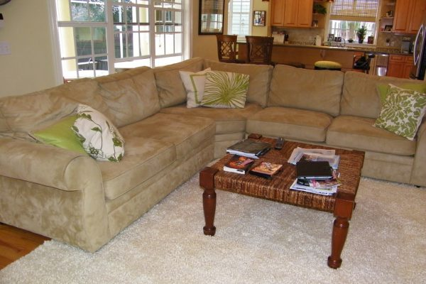 living room decorating ideas and designs Remodels Photos SURROUNDINGS INTERIORS INC Tampa Florida United States transitional
