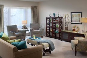 Living Room Decorating and Designs by Susan Hayward Interiors - Milton, Massachusetts, United States