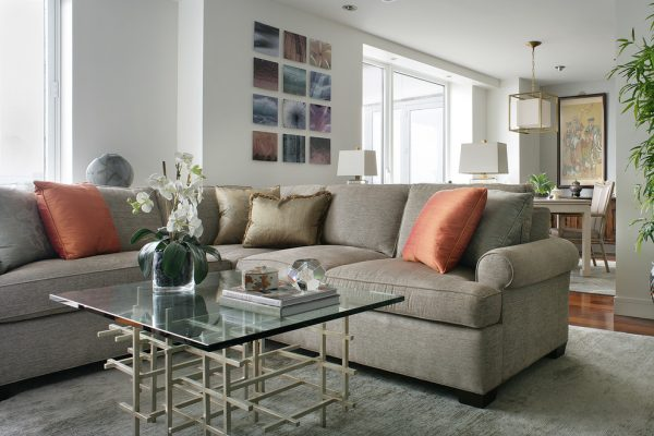 living room decorating ideas and designs Remodels Photos Valerie Grant InteriorsSummitNew Jersey United States transitional-living-room-001