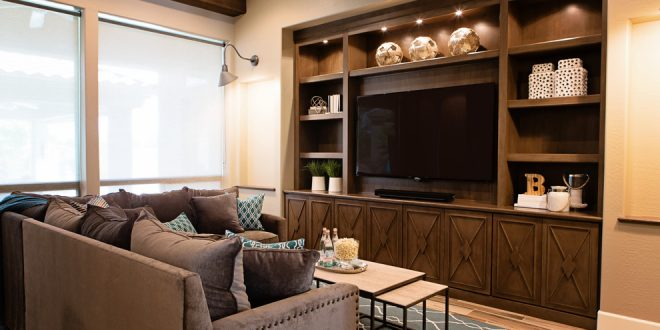 living room decorating ideas and designs Remodels Photos ampersand design group & studio Gilbert Arizona United States transitional-family-room