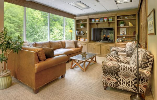 living-room-decorating-ideas-and-designs-remodels-photos-beth-rosenfield-design-llc-ridgefield-connecticut-united-states-contemporary-family-room-001