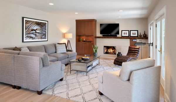 living-room-decorating-ideas-and-designs-remodels-photos-beth-rosenfield-design-llc-ridgefield-connecticut-united-states-contemporary-family-room
