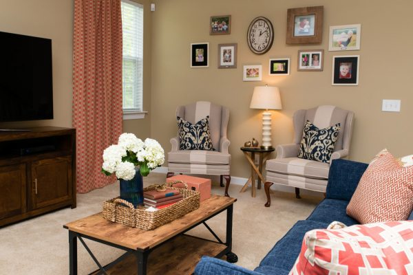 living-room-decorating-ideas-and-designs-remodels-photos-dwell-by-cheryl-interiors-huntersville-north-carolina-united-states-transitional-family-room-007