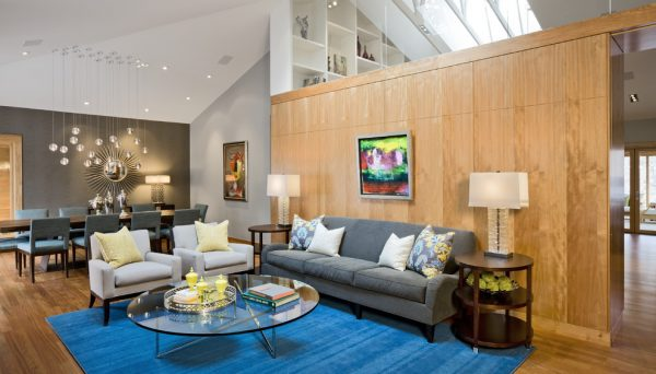 living-room-decorating-ideas-and-designs-remodels-photos-eminent-interior-design-minneapolis-minnesota-united-states-contemporary-living-room-003