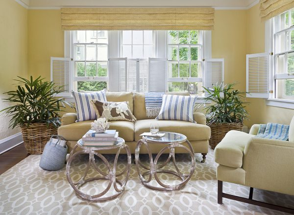 living-room-decorating-ideas-and-designs-remodels-photos-lucy-interior-design-minneapolis-minnesota-united-states-traditional-living-room